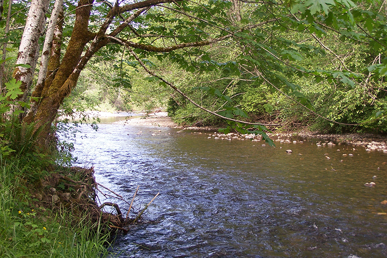 Deschutes River is a part of Ecology's Total Maximum Daily Load (TMDL) study